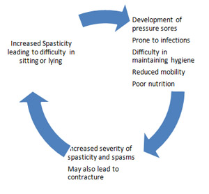approach to spasticity in general practice | british journal of, Skeleton